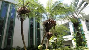 The Hope Center for Rehabilitation Boynton Beach Florida